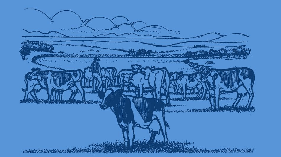 Woodlands Dairy - Cartoon picture of a farm with cows